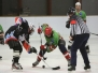 14.03.2017 - 1. AEV vs Eisbrecher - RMHL